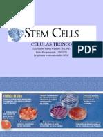 celulas_tronco-2005-2
