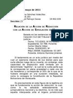 ACCIÓN DE REDUCCIÓN Y ACCION DE SIMULACION