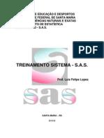 2- Apostila SAS