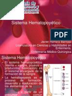 sistemahematopoytico-101011163408-phpapp01
