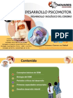 Desarrollo Psicomotor Infantil  2010