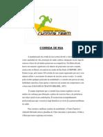 programa_de_corrida