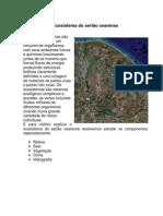 Ecosistema Do Sertão Cearense