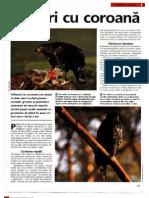 Animale Si Plante - Vulturi cu coroana