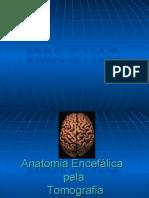 Anatomia Encefalica Pela Tomografia