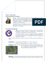 Swat Force Romania Presentation