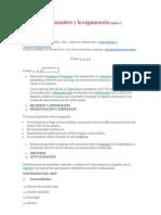 El proceso organizativo y la organización