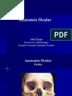 Clase Oftalmo 1 - Anatomia y Refraccion