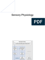 Sensory Phys and Somatic Reflexes