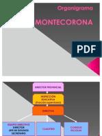 Organigrama CP Montecorona