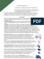 riassunti Anatomia patologica 07-08