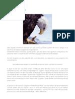 atitudes de aguia