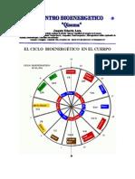Ciclos Bioenergeticos Del Cuerpo