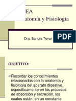 Anatomia y Fisiologia Diarreas