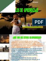 ESTILOS DE APRENDIZAJE.11-02-08