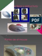 Mouse Tipos y Estructura