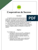 Trabalho de ADM - Cooperativas de Sucesso