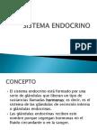 SISTEMA ENDOCRINO 12