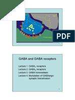 GABA and GABA receptors