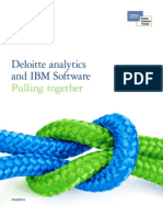 DeloitteanalyticsPOVwithIBMSoftware Final