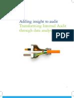 Adding Insight to Audit