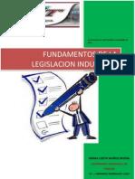 Fundamentos de la legislación industrial medio completo 2