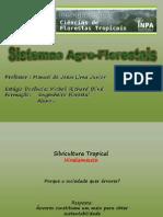 SAFs - Nivelamento Silvicultura