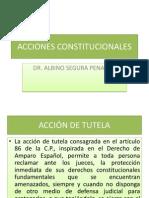 ACCIONES CONSTITUCIONALES[1]