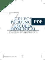 7-GRUPOS PEQUEÑOS