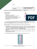 Guia 1 General Ida Des y Planimetria 2011