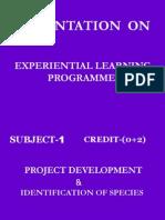 Fwe2 Presentation