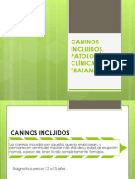 CANINOS INCLUIDOS