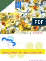 Development of Oral Micro Flora