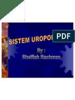 Sistem Uropoetica