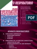 APARATO RESPIRATORIO-1