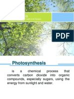 Photosynthesis (Sir Adre Miclat edit)