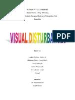 Visual Disturbances