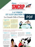 Les Cahiers du DSNCRP - LA VISION ET LES GRANDS DÉFIS - 2008