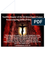 Twelfth Outline of the KLI Brave Heart Project 112111