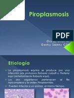 Piroplasmosis