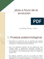 P.evolucion - Laura Borrego