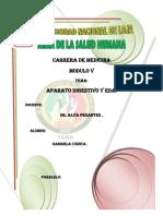 Infortme de Anatomia, Fisiologia y Eda