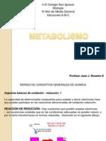 metabolismo parte 2