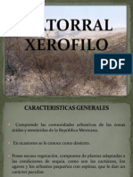 MATORRAL_XEROFILO