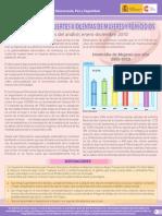 Informe Femicidios Observatorio ENE-DIC-2010