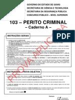 Perito Criminal - Civil