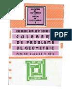 Schneider_Clasele_05_08_Geometrie