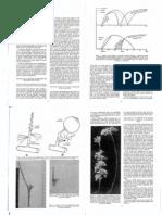 Fisiologia de La Madera Frutal W Feucht