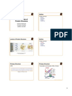 Fundamentals of Protein Structure