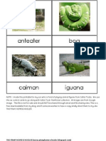 Rainforest Control Cards